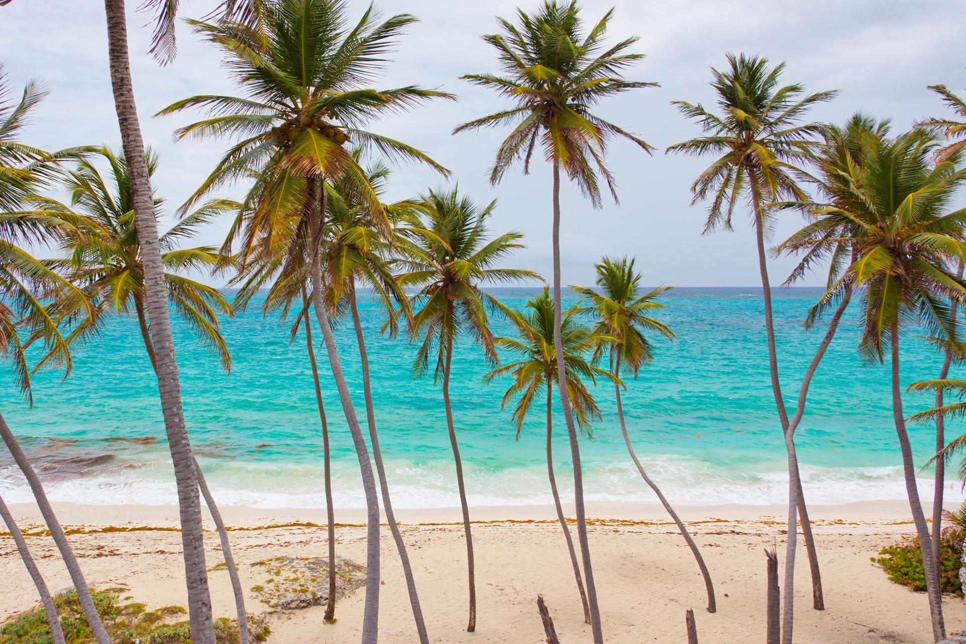 counseling palm bay
